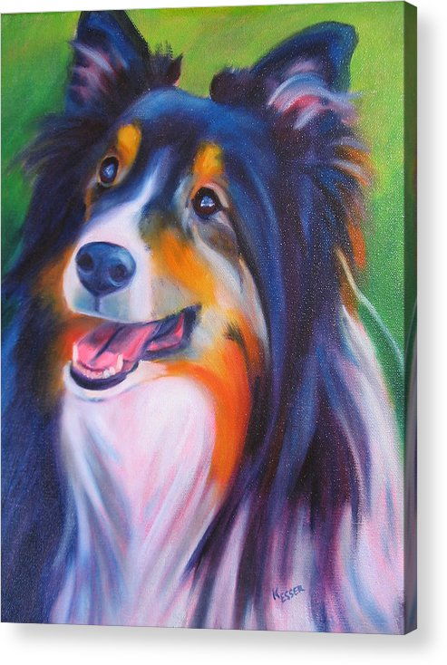 Sheltie Acrylic Print featuring the painting Chessie by Kaytee Esser