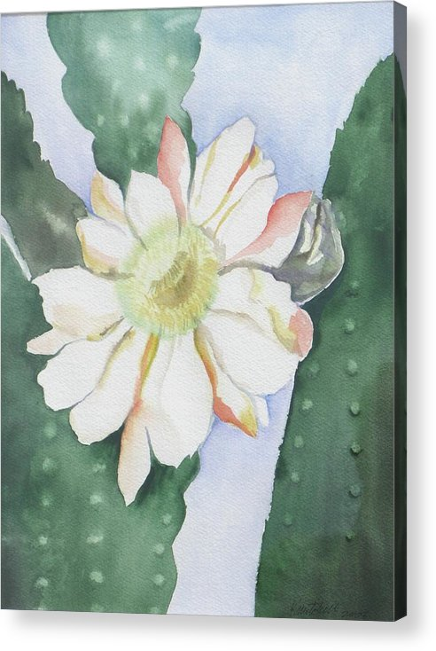 Cactus Flower Acrylic Print featuring the painting Night Bloomers by Kathy Mitchell