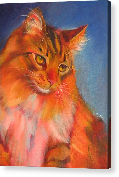 Maine Coon Cat Acrylic Print featuring the painting Romeo by Kaytee Esser