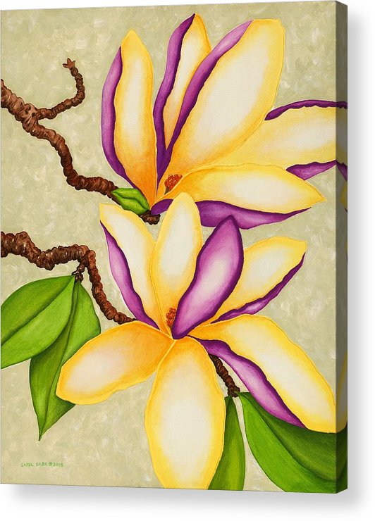 Two Magnolias Acrylic Print featuring the painting Magnolias by Carol Sabo