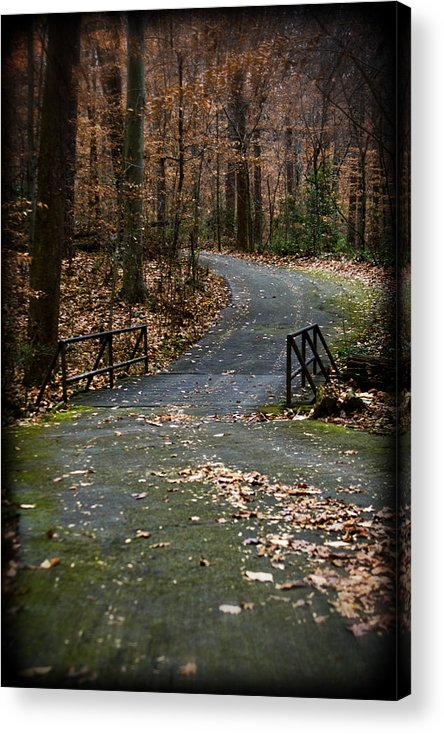 Landscape Acrylic Print featuring the photograph Around the Bend by Ayesha Lakes
