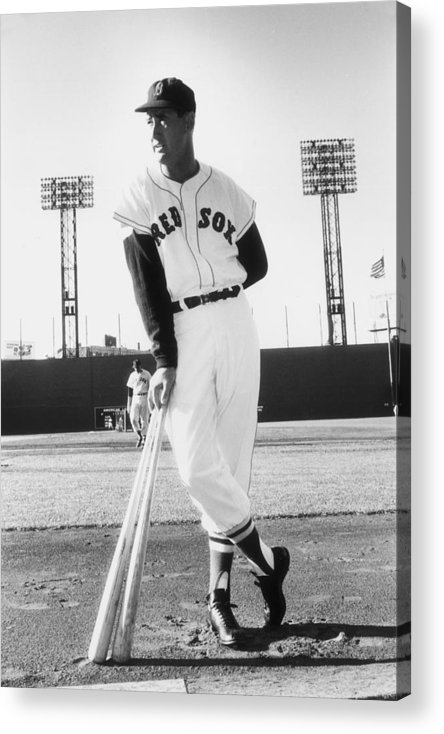 People Acrylic Print featuring the photograph Ted Williams by Slim Aarons
