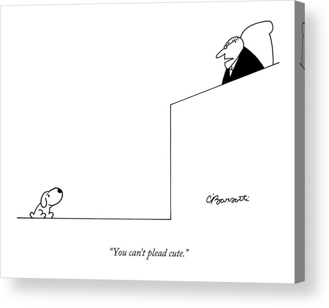 Dogs Acrylic Print featuring the drawing You Can't Plead Cute by Charles Barsotti