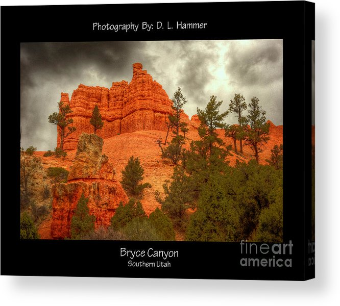 Places Acrylic Print featuring the photograph Bryce Canyon by Dennis Hammer