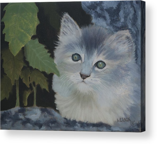 Nature Acrylic Print featuring the painting Coming out of hiding by Wade Clark