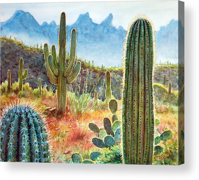 Tucson Acrylic Print featuring the painting Desert Beauty by Frank Robert Dixon