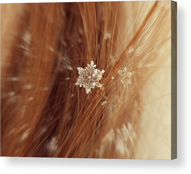 Winter Acrylic Print featuring the photograph Fallen Flake by Candice Trimble