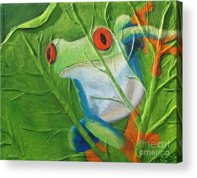 Red Eyed Tree Frog Acrylic Print featuring the painting Hide and Seek by Darlene Green