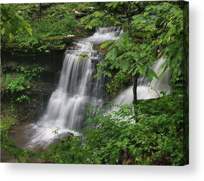 Tim Fitzharris Acrylic Print featuring the photograph Lichen Falls Ozark National Forest by Tim Fitzharris