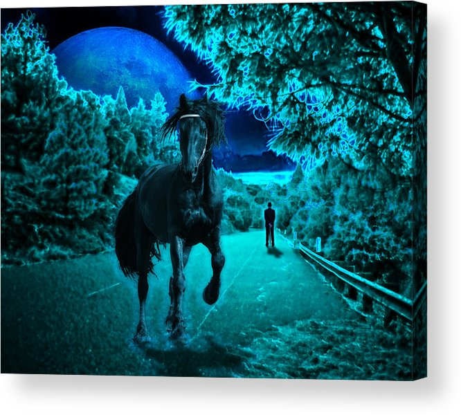 Horse Acrylic Print featuring the photograph Midnight Vision by Jim Painter