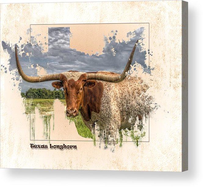 Texas Longhorn Acrylic Print featuring the digital art Texas Longhorn by Ray Keeling