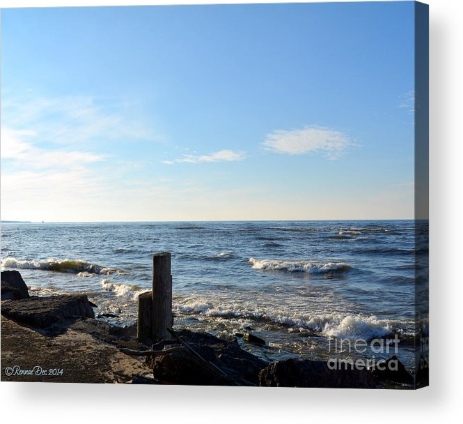Lake Acrylic Print featuring the photograph Winter Surprise by Rennae Christman