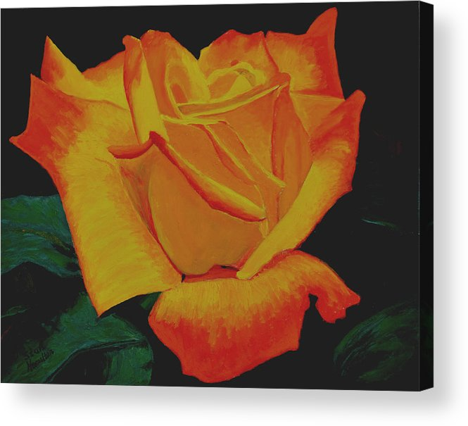 Yellow Rose Acrylic Print featuring the painting Yellow Rose by Stan Hamilton