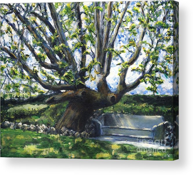 California Acrylic Print featuring the painting Adamson Home Tree by Randy Sprout