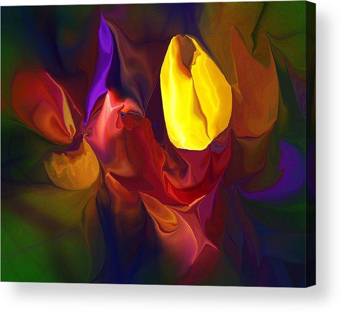 Abstract Acrylic Print featuring the digital art Botanical Fantasy 122011 by David Lane
