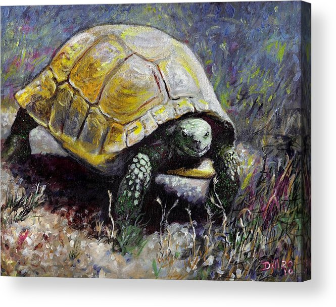 Turtle Nature Desert Green Wildlife Animal Shell Tortoise Acrylic Print featuring the painting Turtle by Rust Dill