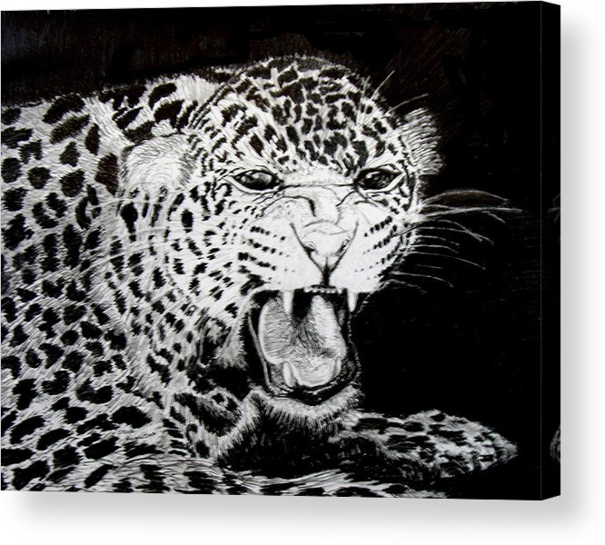 Jaquar Acrylic Print featuring the drawing Jaquar II by Stan Hamilton