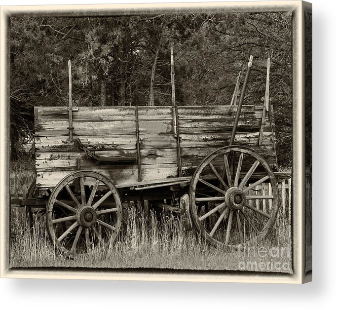 Wagon Acrylic Print featuring the photograph Relic of Days Gone By by Dennis Hammer