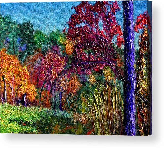 Plein Air Acrylic Print featuring the painting Bcsp15 by Stan Hamilton