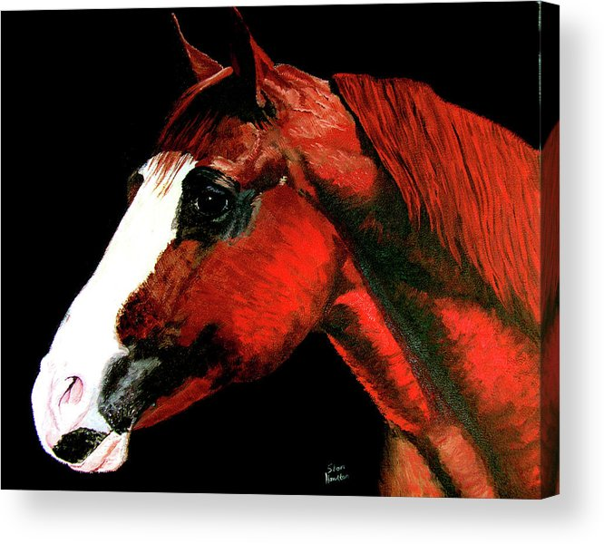 Original Oil On Canvas Acrylic Print featuring the painting Big Red by Stan Hamilton