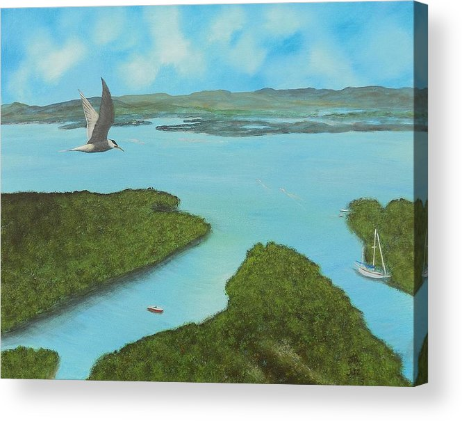 Seascapes Acrylic Print featuring the painting Birds Eye View by Tony Rodriguez