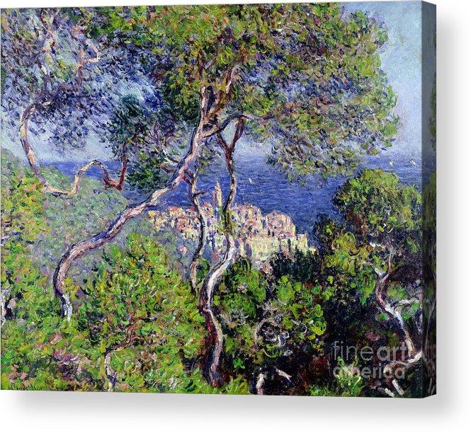 Bordighera Acrylic Print featuring the painting Bordighera by Claude Monet