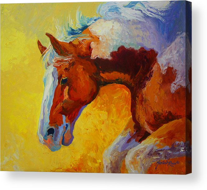 Western Acrylic Print featuring the painting Bronc I by Marion Rose