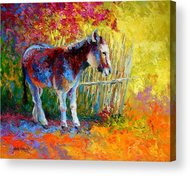 Western Acrylic Print featuring the painting Burro And Bouganvillia by Marion Rose