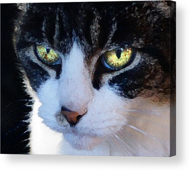 Cat Acrylic Print featuring the digital art Cat Eyes by Jana Russon