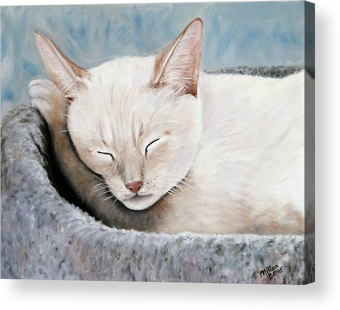 Pets Acrylic Print featuring the painting Cat Nap by Merle Blair