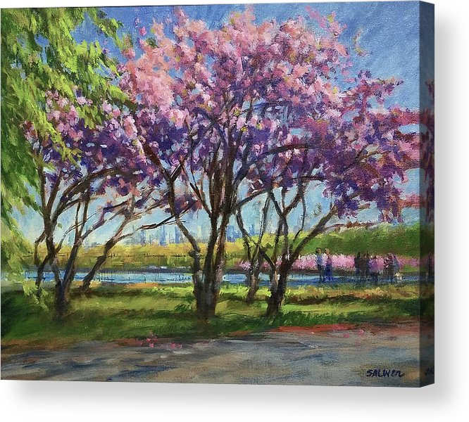 New York Landscape Acrylic Print featuring the painting Cherry Blossoms, Central Park by Peter Salwen