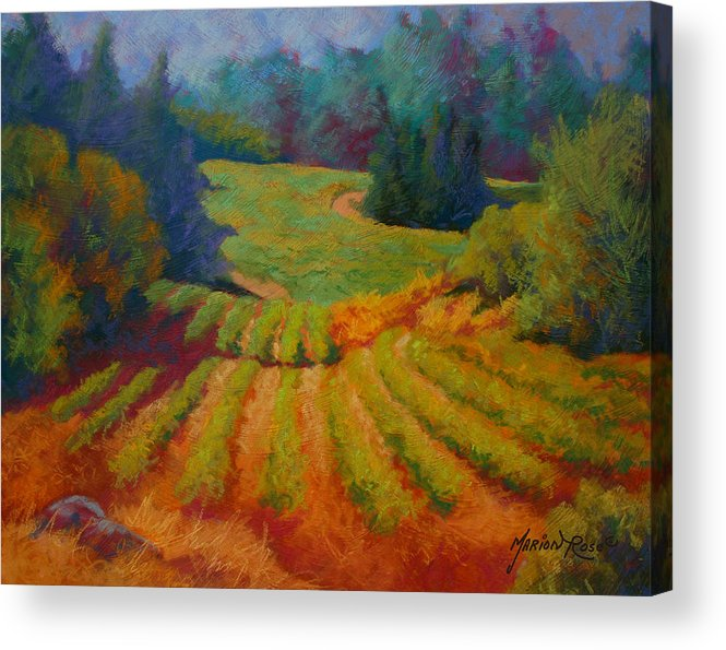 Pastel Acrylic Print featuring the painting Columbia Valley Vineyard by Marion Rose