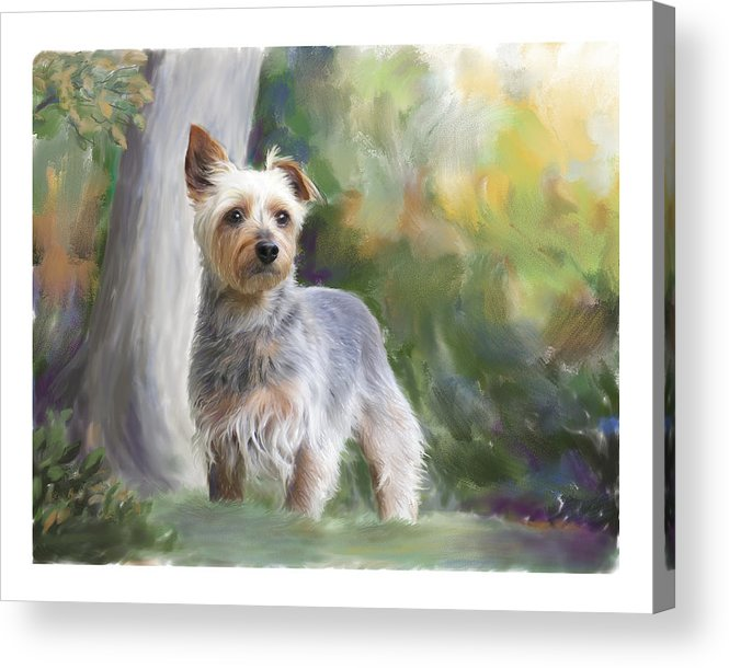 Dog Acrylic Print featuring the painting Courageous Curiosity by Connie Moses