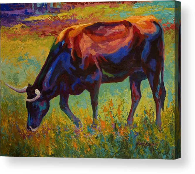 Longhorn Acrylic Print featuring the painting Grazing Texas Longhorn by Marion Rose