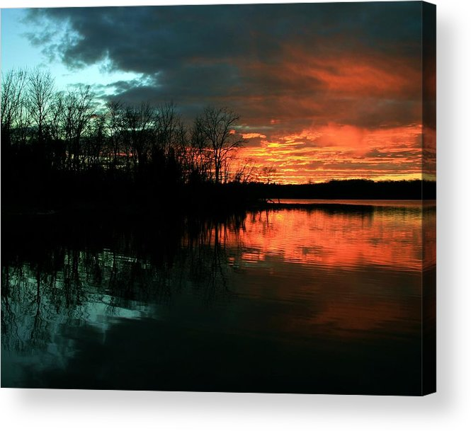 Landscape Acrylic Print featuring the photograph Life by Mitch Cat