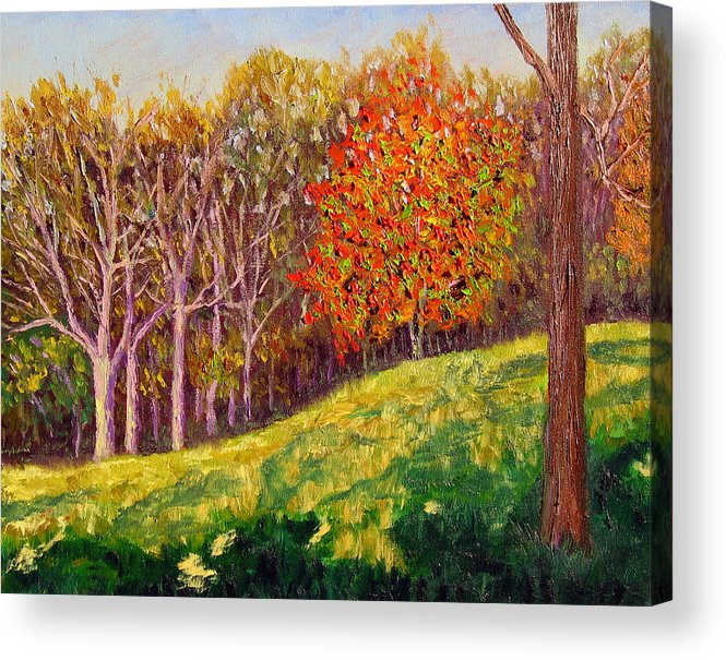 Landscape Acrylic Print featuring the painting Mooresville 10 11 by Stan Hamilton