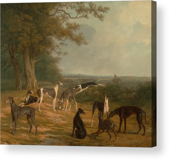 18th Century Art Acrylic Print featuring the painting Nine Greyhounds In A Landscape by Jacques-Laurent Agasse