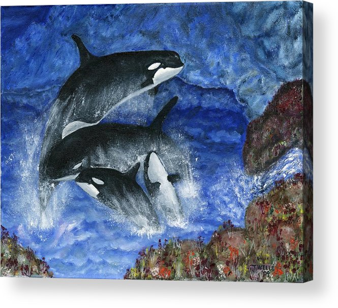 Killer Whales Acrylic Print featuring the painting Orcas Family Frolicks by Tanna Lee M Wells