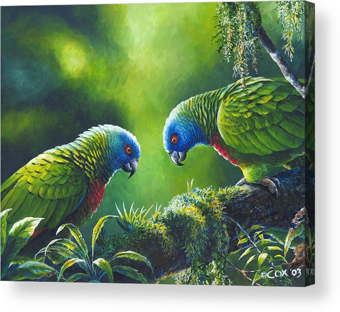 Chris Cox Acrylic Print featuring the painting Out on a Limb - St. Lucia Parrots by Christopher Cox