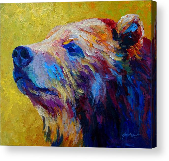 Bear Acrylic Print featuring the painting Pretty Boy - Grizzly Bear by Marion Rose