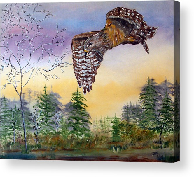 Hawk Acrylic Print featuring the painting Red Shouldered Hawk by Mikki Alhart