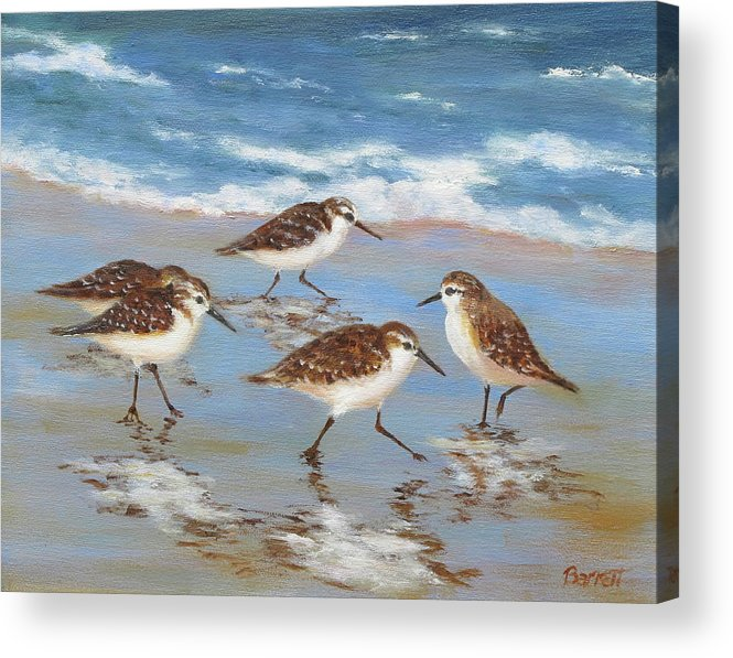 Sandpipers Acrylic Print featuring the painting Sandpipers by Barrett Edwards