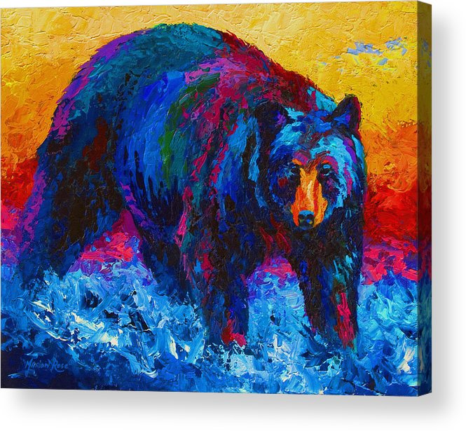Western Acrylic Print featuring the painting Scouting For Fish - Black Bear by Marion Rose