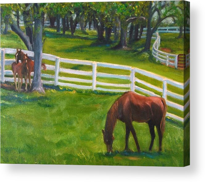 Equine Acrylic Print featuring the painting Springtime at Undulata by Stephanie Allison