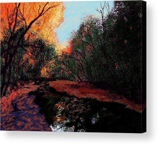 Creek Bottom Acrylic Print featuring the digital art The Creek Bottom by Stan Hamilton