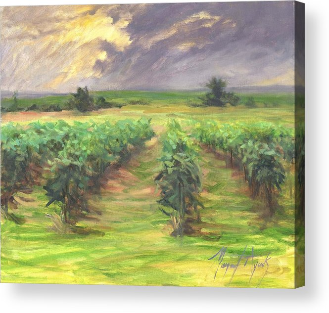Vinyard Acrylic Print featuring the painting Vinyard by Margaret Aycock