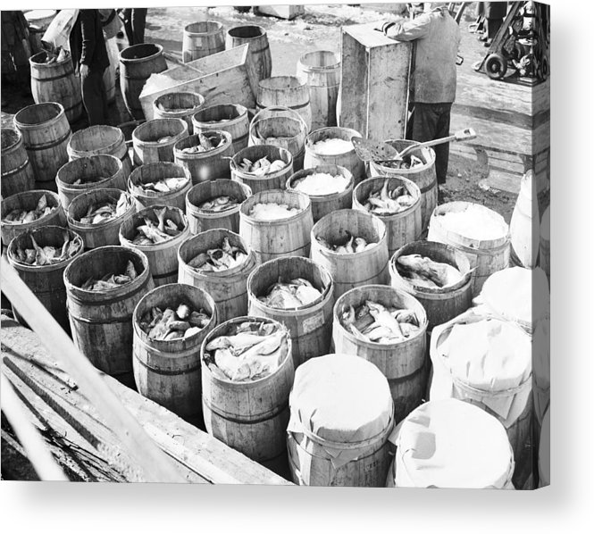 Fulton Fish Market Acrylic Print featuring the photograph Fish For Sale In Barrels At The Fulton by Bert Morgan