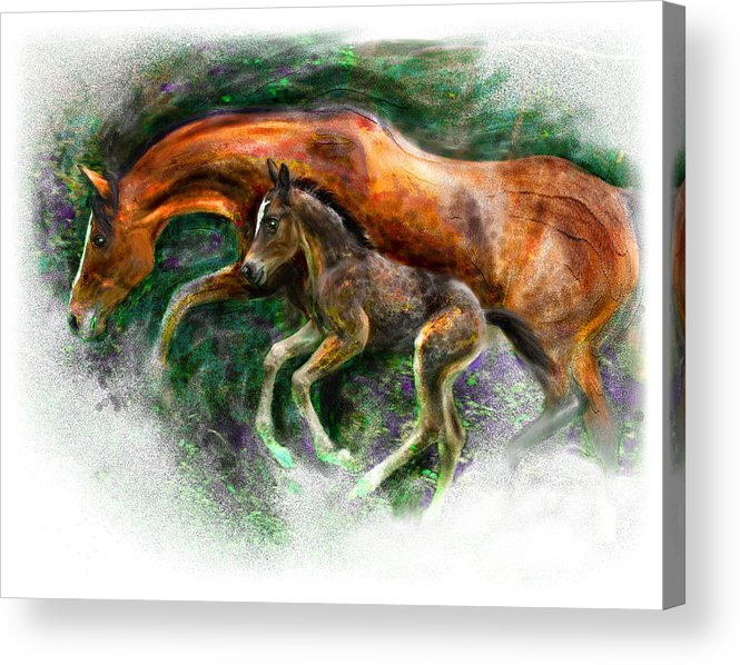 Horse Acrylic Print featuring the painting In Harmony Three Days Old Arabian Mare Running Foal by Connie Moses