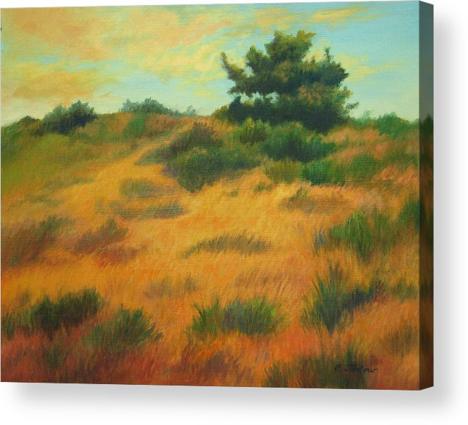 Cape Cod Scene Acrylic Print featuring the painting Province Lands Cape Cod by Phyllis Tarlow