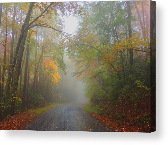 Fall Acrylic Print featuring the photograph Around The Bend by Judy Waller